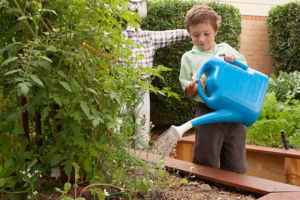 Student watering the garden at St Francis Xavier's Catholic Primary School Lurnea